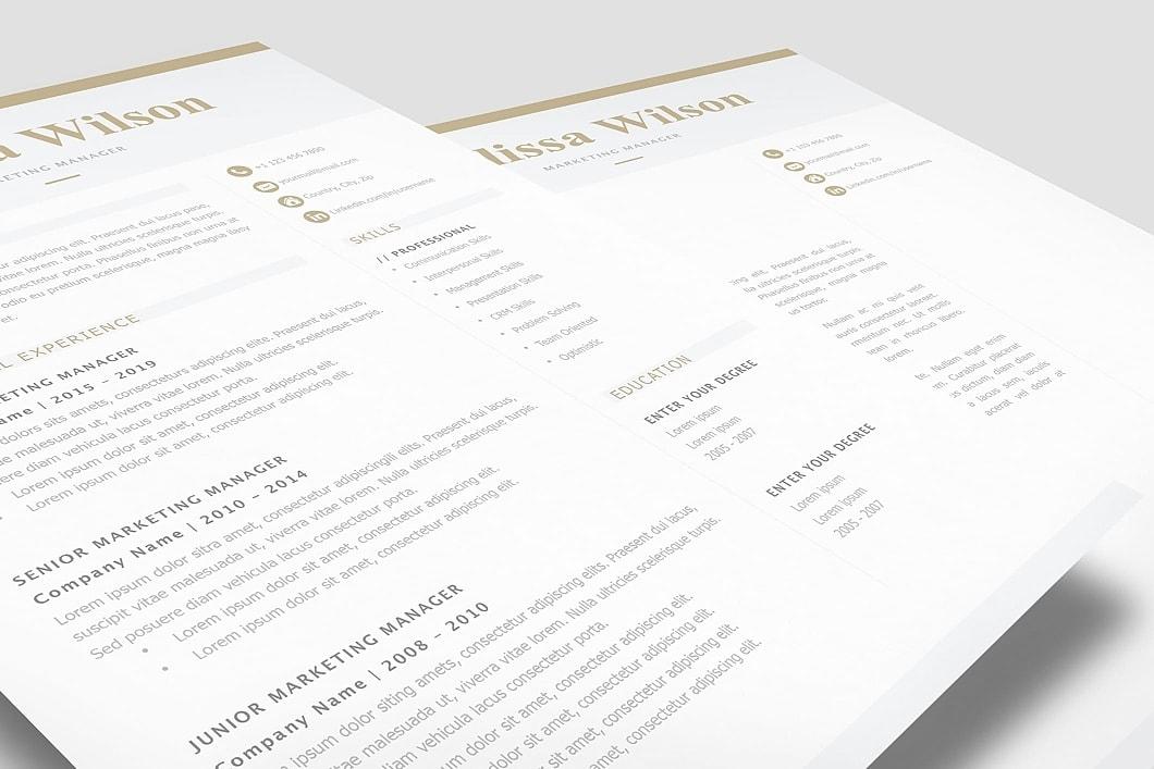 Classic Resume Template 120330 3