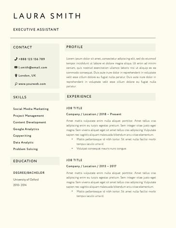 Classic Resume Template 120800