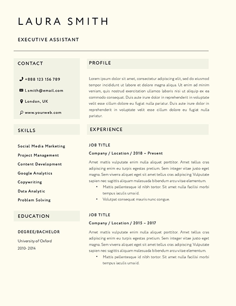 Classic Resume Template 120800