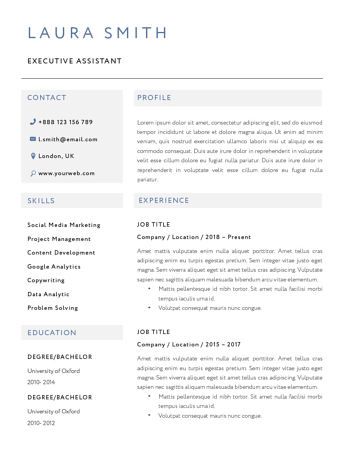 Classic Resume Template 120810