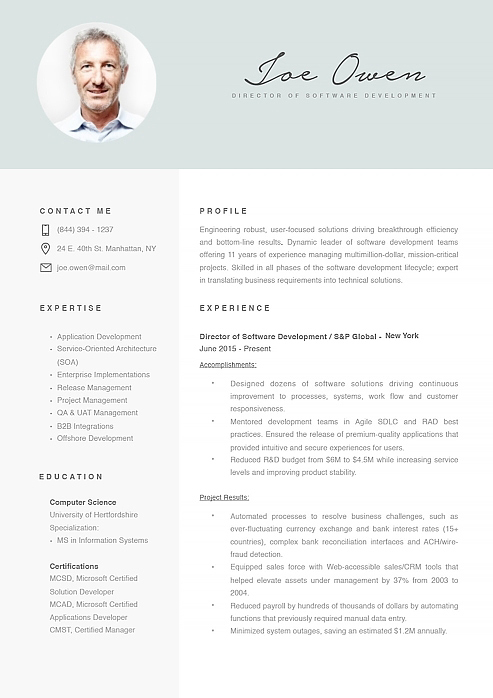 Director Of Software Development