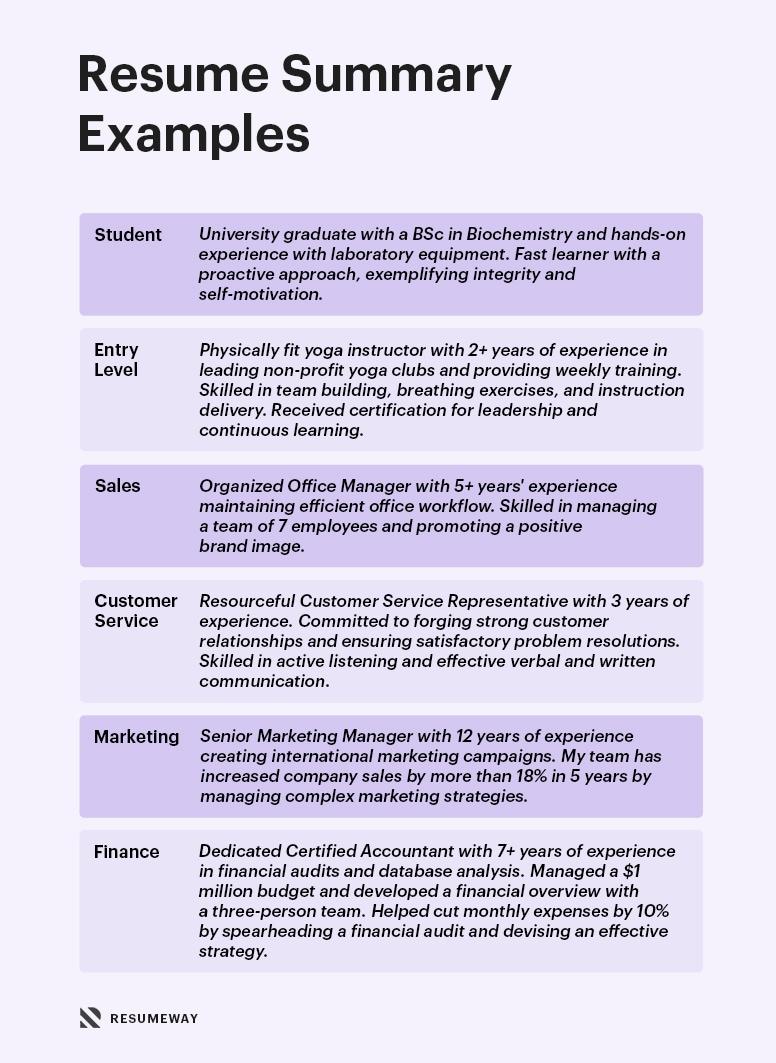 Resume Sumary Examples Update