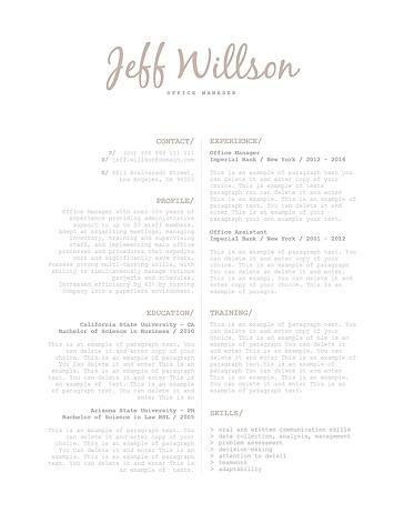 Elegant Resume Template 120140