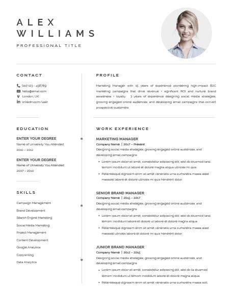 Resume Template Elegant 120870