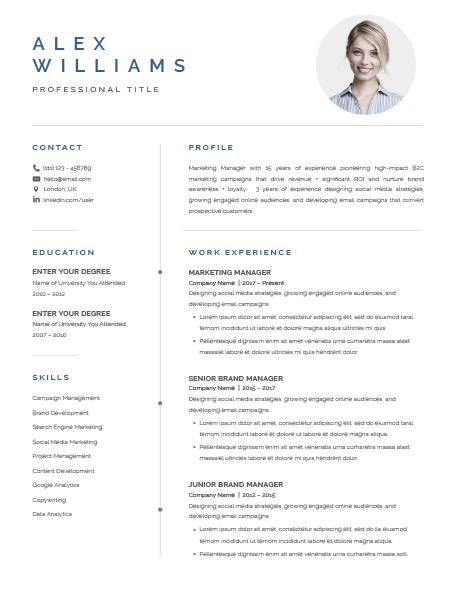 Resume Template Elegant 120880