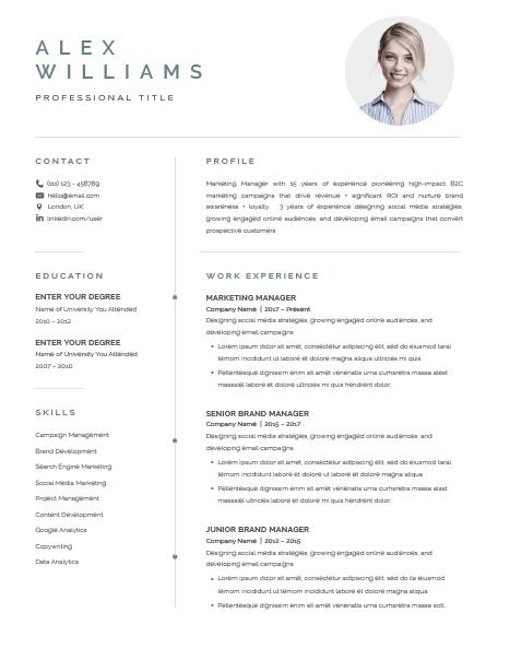 Resume Template Elegant 120890