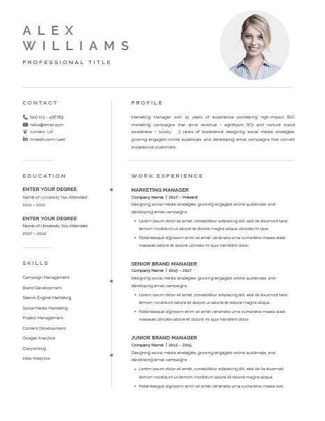 Resume Template Elegant 120900