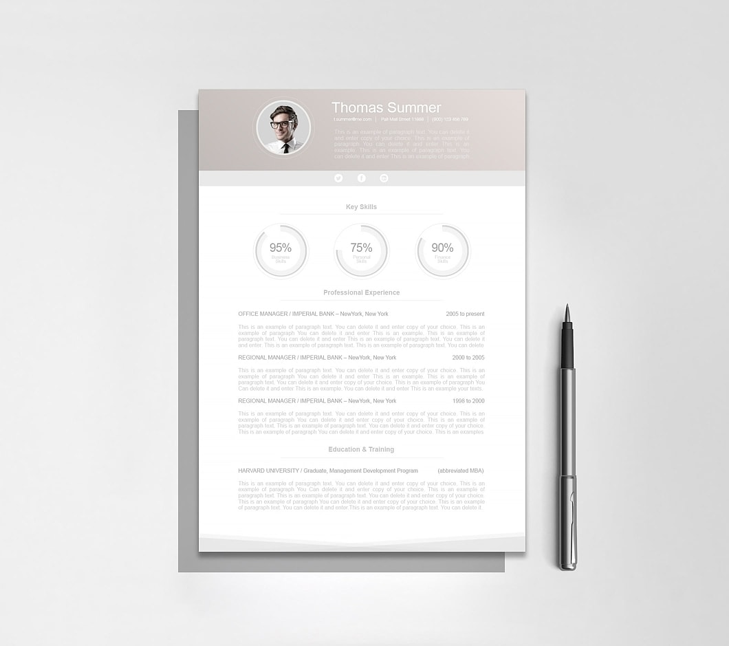 Resumeway Modern Resume Template 110650