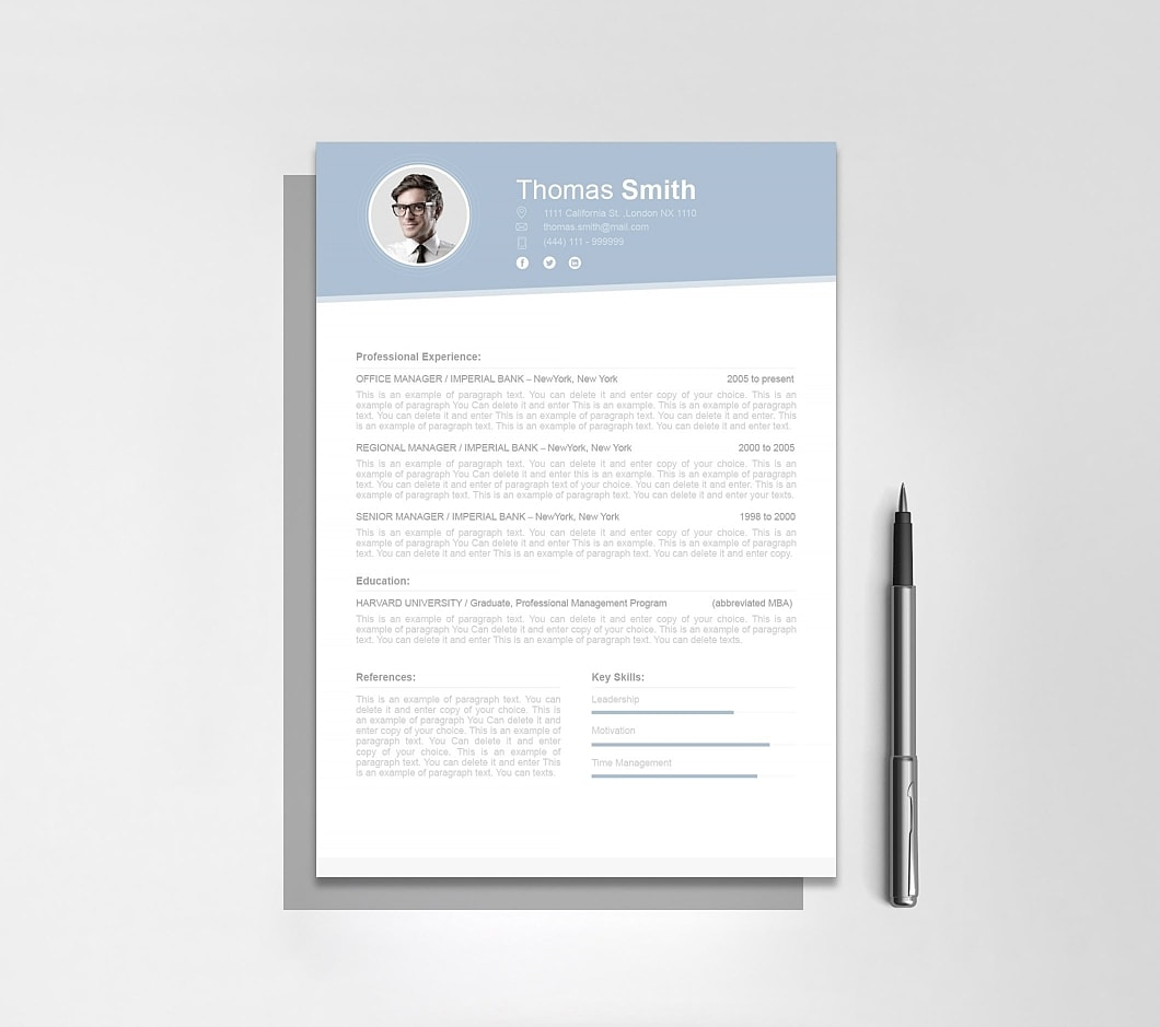 Resumeway Resume Template 110700